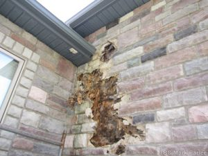 Damage caused by not installing kickout flashing. (photo courtesy of Mark Parlee, The Building Consultant)